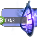 dna3-teach